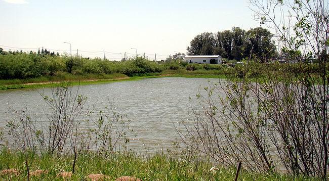 Las lagunas abastecen a la ciudad y su subsistencia será motivo de análisis en la Jornada.